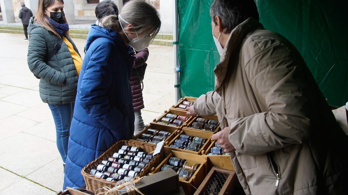 Mercado ecológico en la plaza de la Constitución de Zamora
