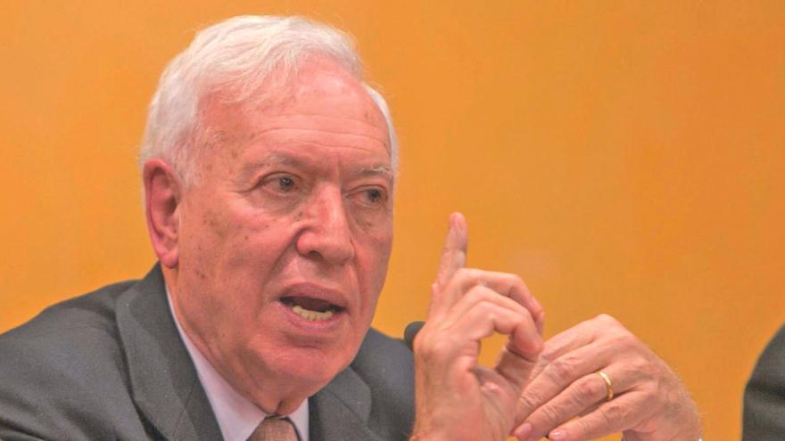 """José Manuel García-Margallo: """"Europa debe actuar de forma rápida, enérgica y solidaria. Ningún país sobrevivirá solo a esta crisis"""""""