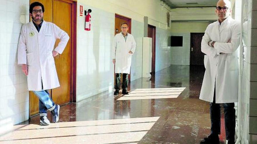 """Un nefrólogo de Zamora lidera un ensayo sobre el """"fuego inmunológico"""" por COVID"""