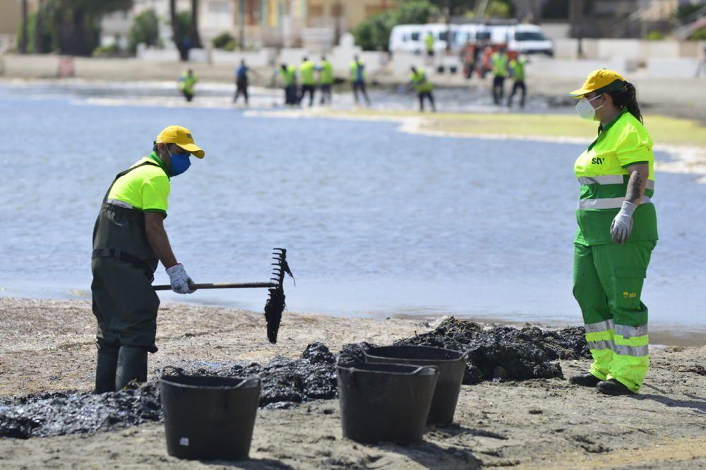 Limpieza del Mar Menor en Los Alcázares