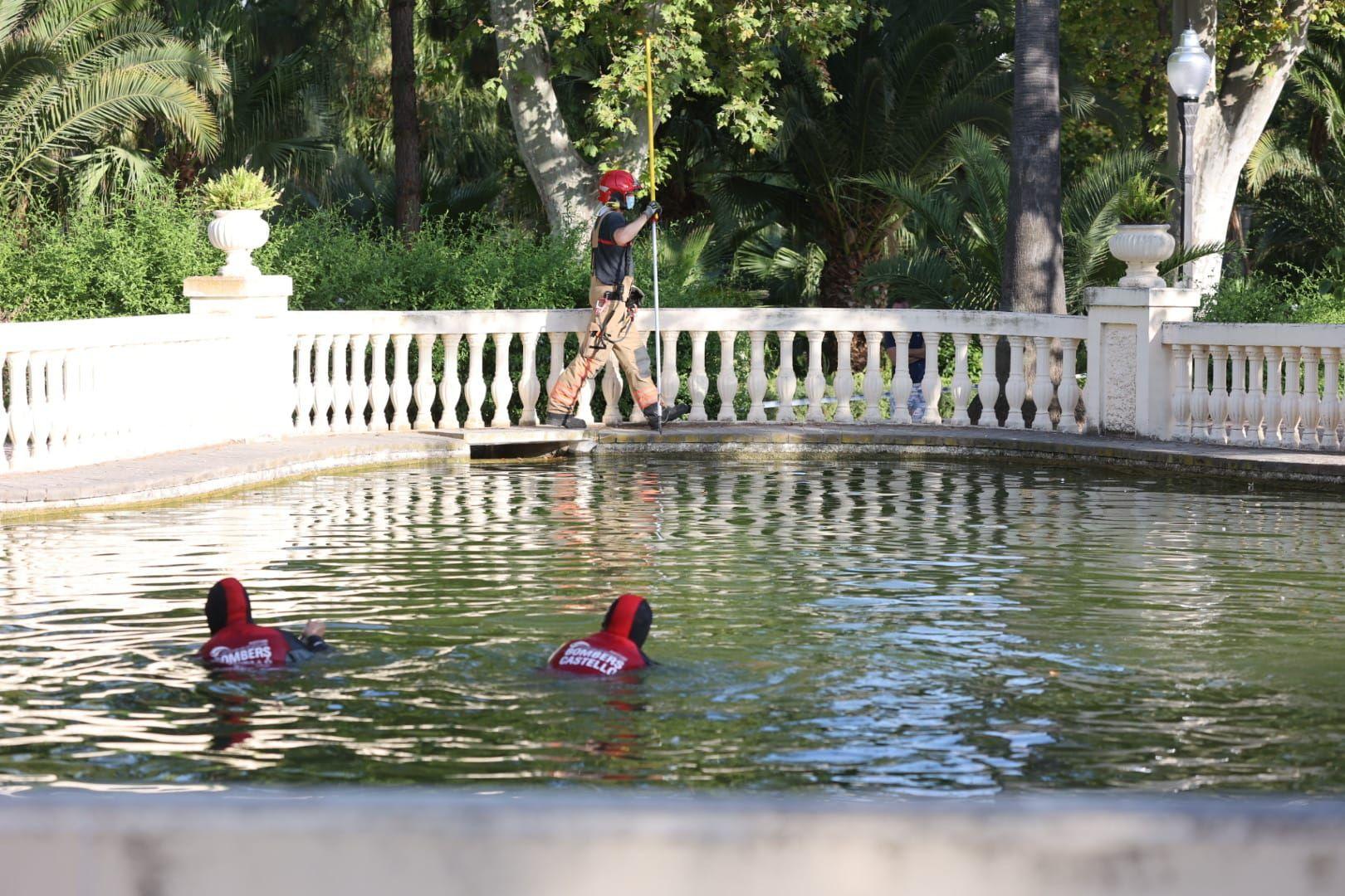 Imagen del rescate del ahogado en el estanque del parque Ribalta