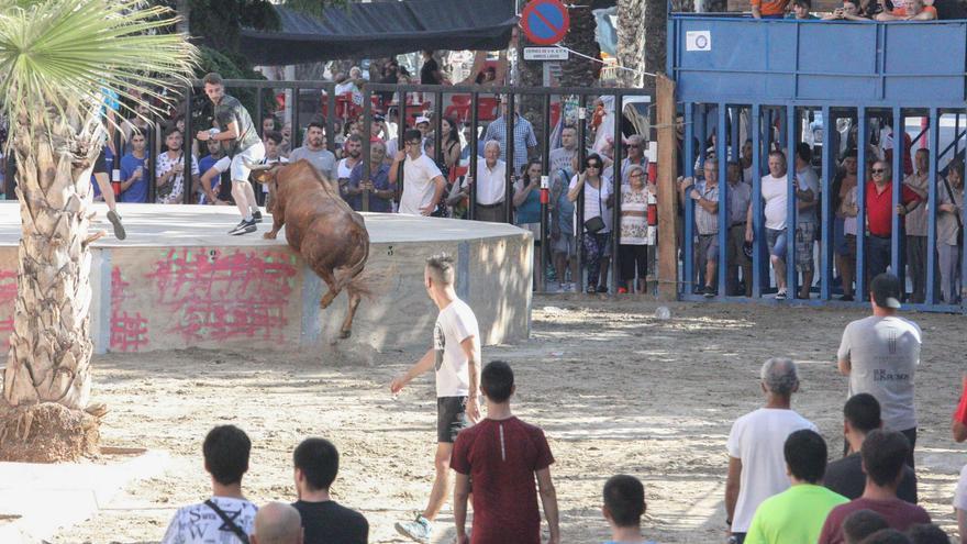 Los bous al carrer crean su agente covid para volver a realizar festejos en las calles