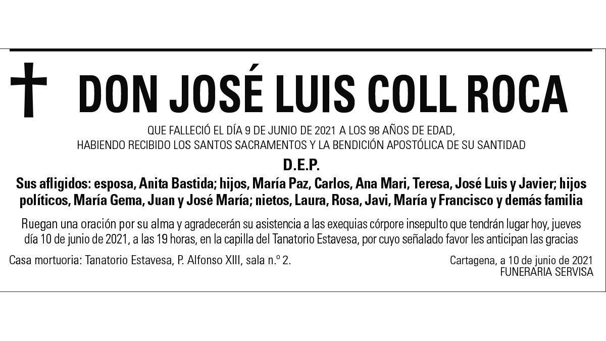 D. José Luis Coll Roca