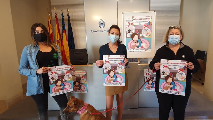 Campaña para prevenir el abandono de mascotas en Elche tras las fiestas navideñas