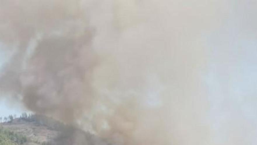 El segundo incendio forestal del verano en La Palma quema 50 hectáreas de pino