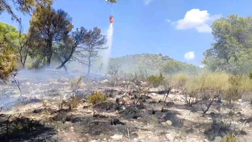 Incendio forestal entre Biar y Sax