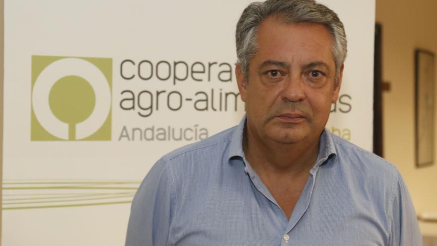 """Javier Alcalá: """"Se ha trabajado en el campo sin descanso y no ha habido carencia"""""""