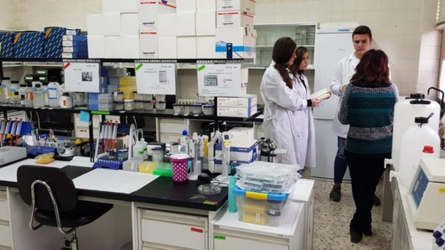 Alumnos del IES Los Sauces de Benavente trabajan en el laboratorio de su instituto.