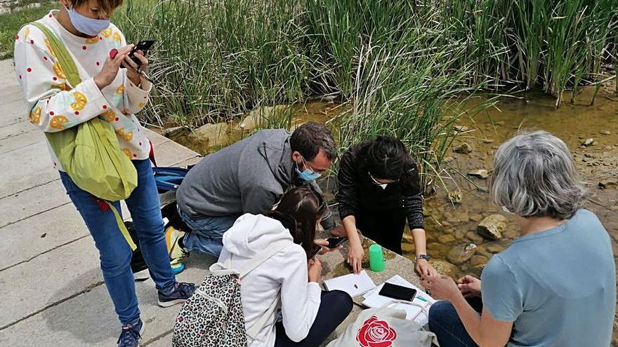 Escoles d'Igualada fan una descoberta conjunta de l'entorn
