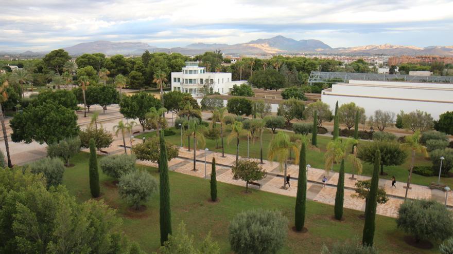 El Consell financia con 3,7 millones ocho proyectos   de investigación de la UA