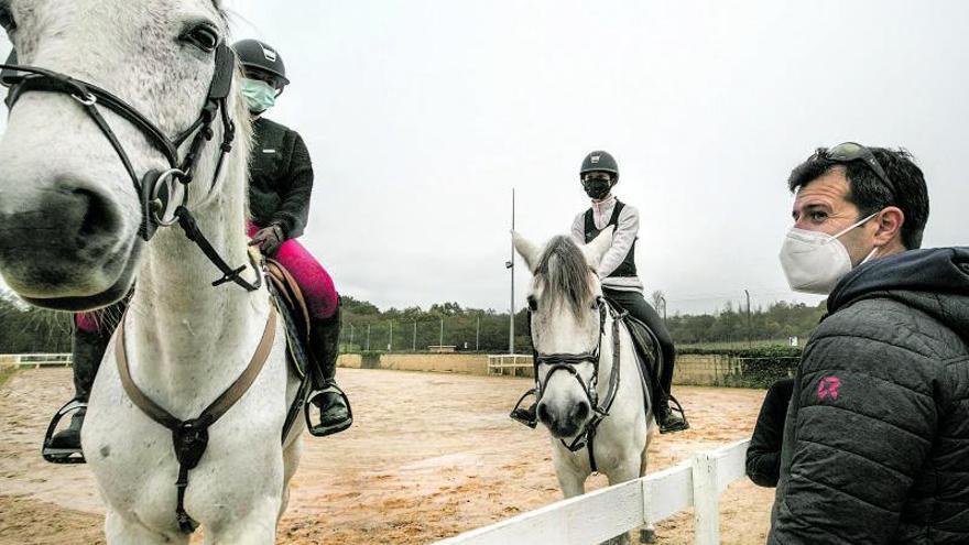 El virus también afecta a los caballos