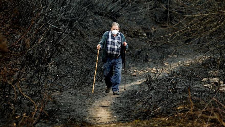 La amenaza de la Fiscalía sobre los concellos sin plan contra incendios surte efecto