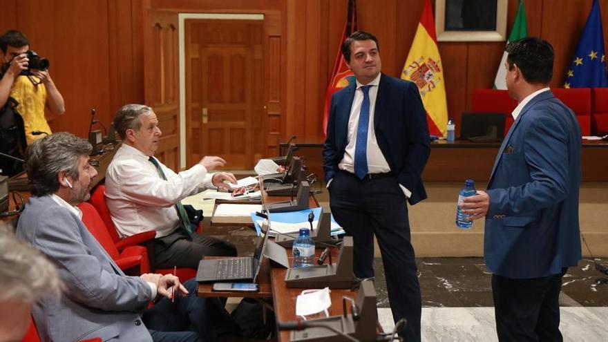 El Pleno de Córdoba acuerda pedir al Gobierno recursos para gestionar la renta mínima vital