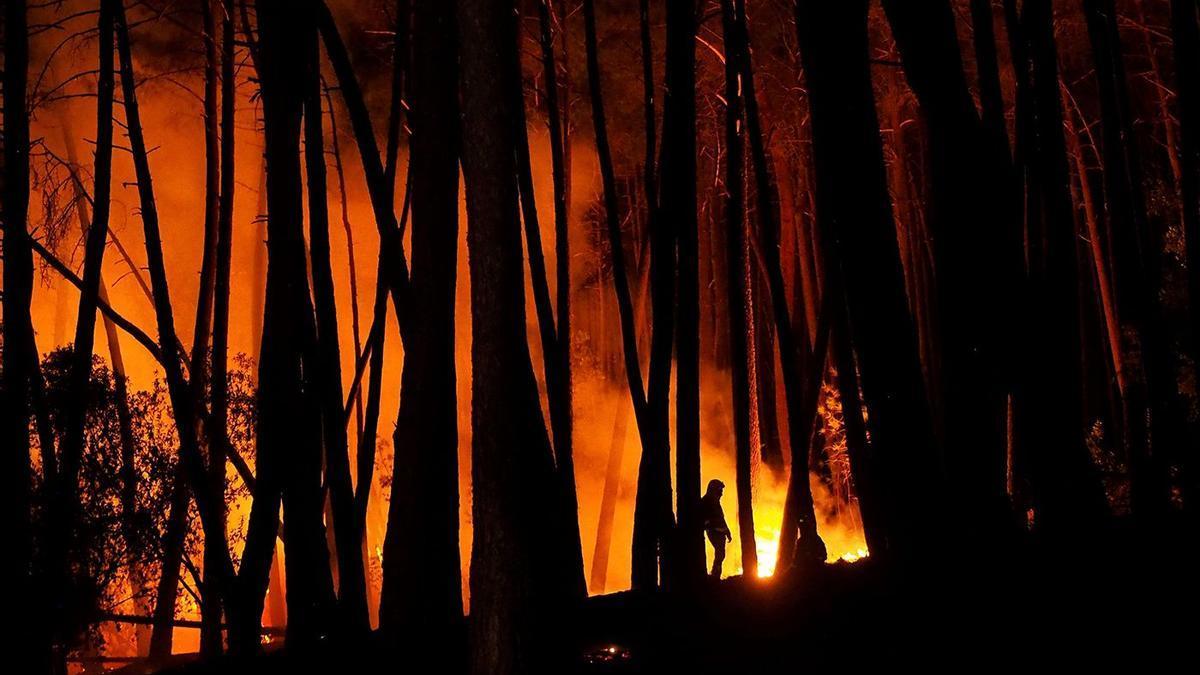 Las llamas arrasaron la Ribeira Sacra.