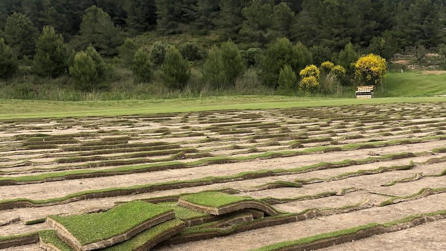 Comienza la reforma agronómica del recorrido  Mestral de La Sella Golf