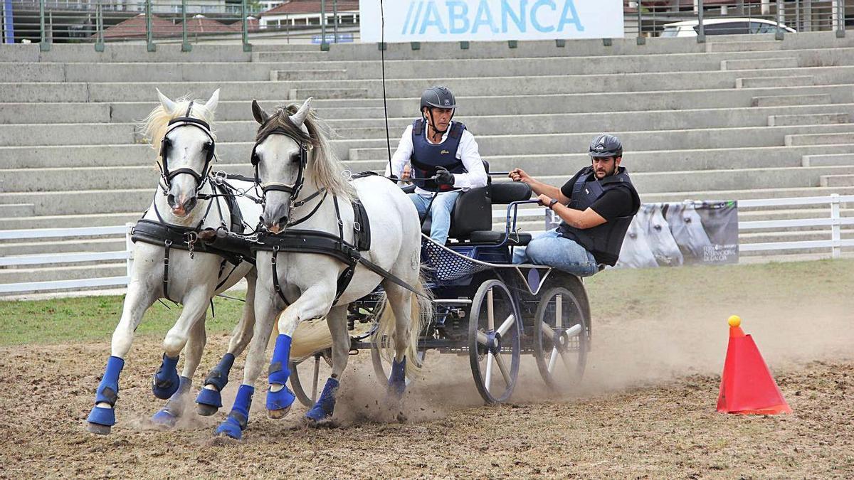Participantes en la liga gallega de engaches.