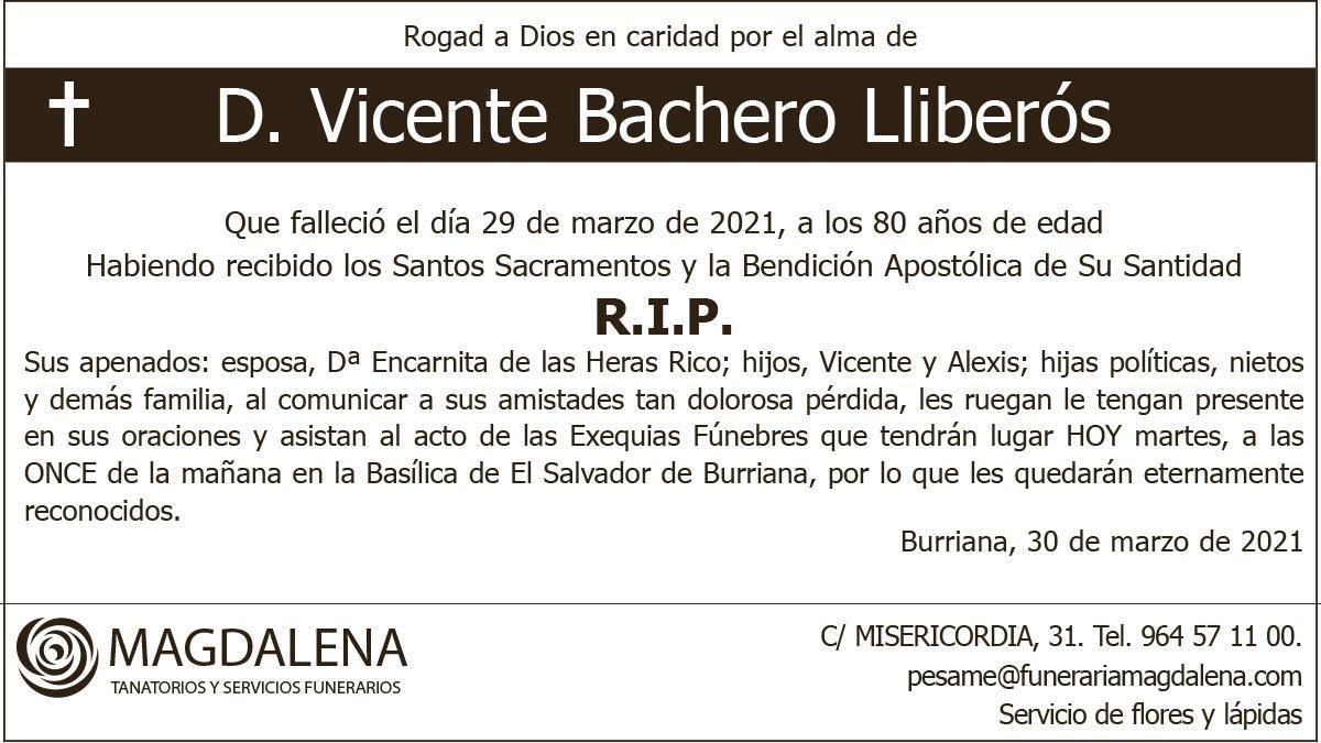 D. Vicente Bachero Lliberós