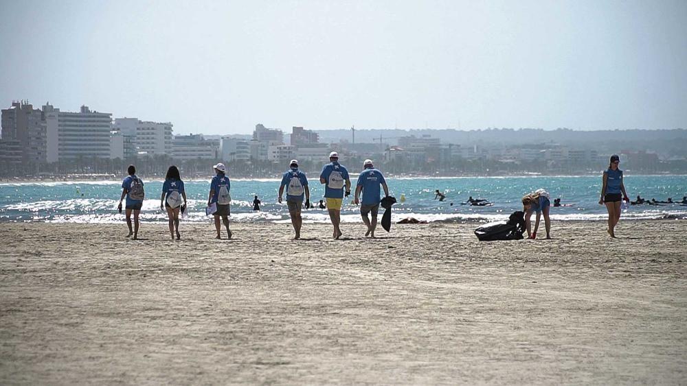 Autovidal organiza una jornada de limpieza de la playa de es Carnatge con gran éxito