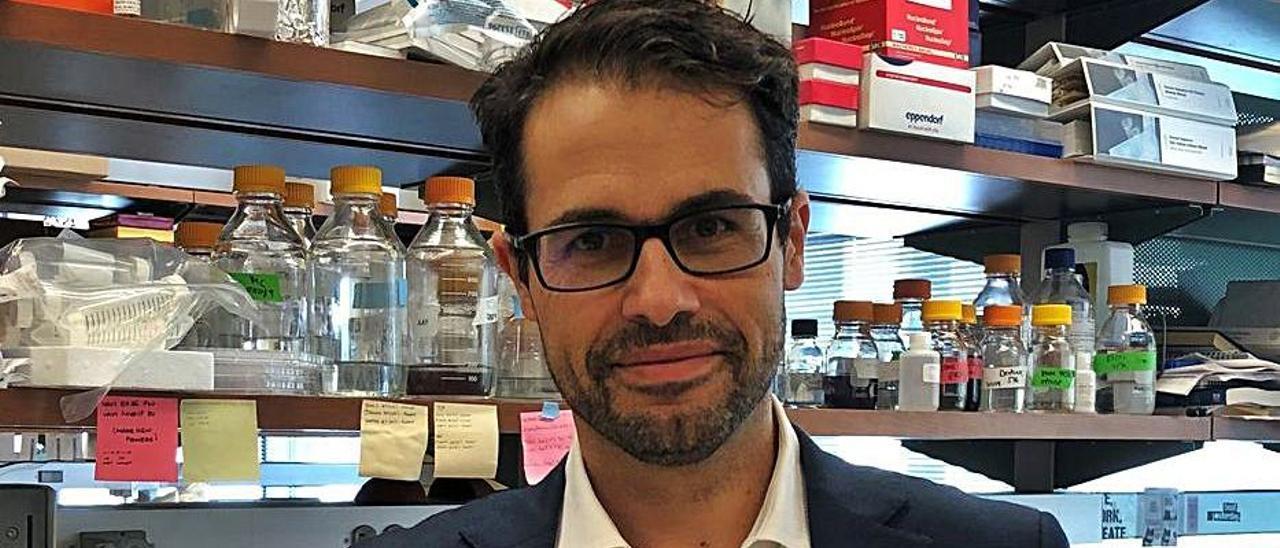 Adolfo Ferrando, en el laboratorio de investigación de la leucemia, en la Universidad de Columbia.