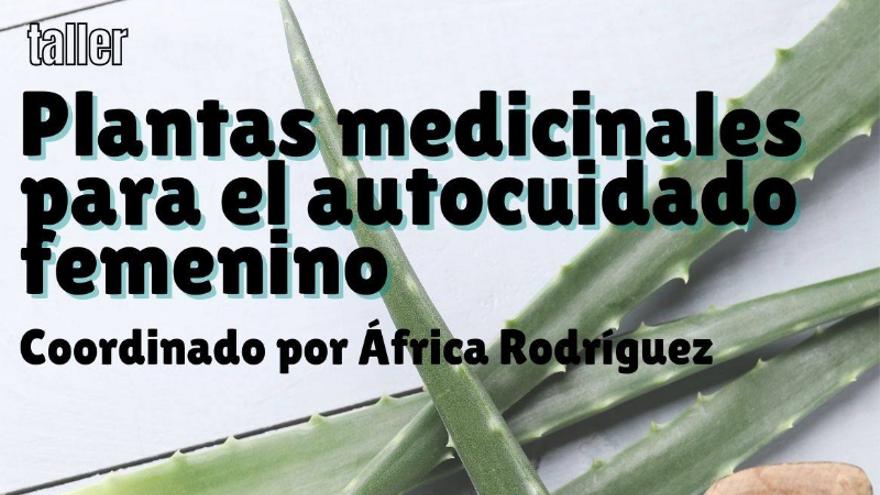 Taller plantas medicinales para el autocuidado femenino