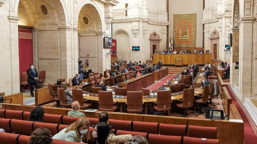 Una rata interrumpe el pleno del Parlamento andaluz