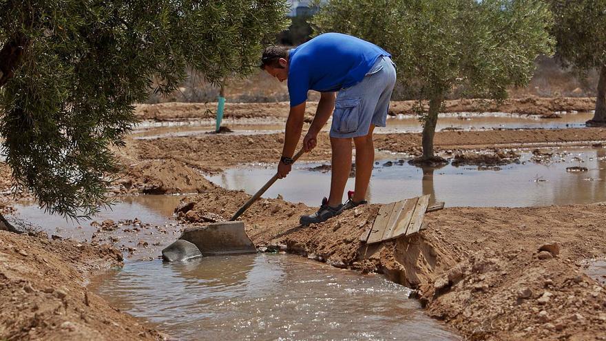 El Gobierno y Castilla-La Mancha pactan reducir a la mitad el trasvase Tajo-Segura