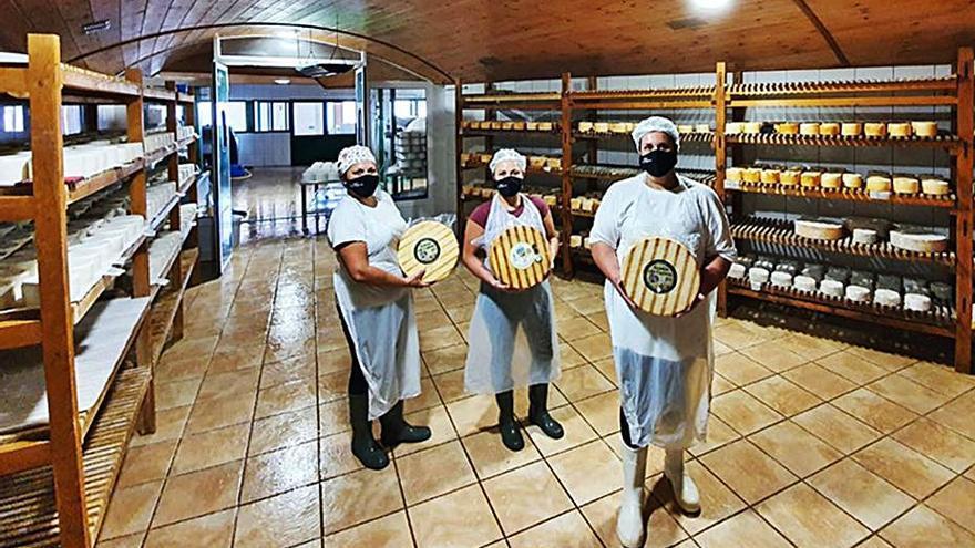 La Denominación de Origen Queso Palmero impide que 3.000 kilos de queso acaben en la basura