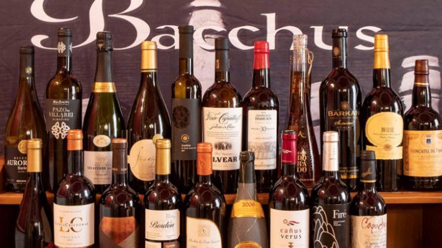 23 vinos canarios, entre los mejores del mundo