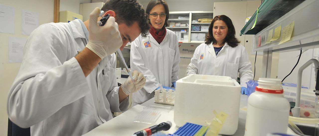 Investigación en la UMH antes de la pandemia
