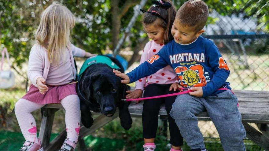 Alumnos en Ibiza disfrutan de una terapia inclusiva con la perra Nara
