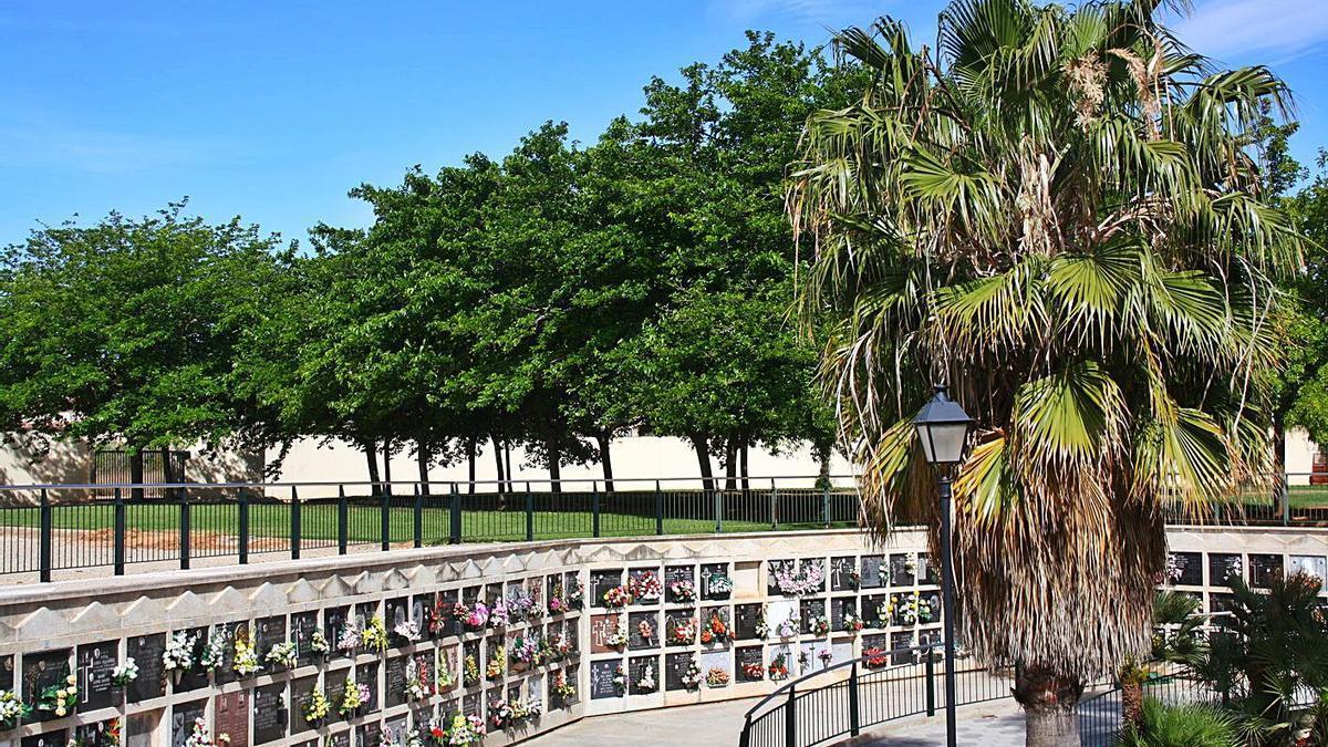 El cementerio de l'Eliana ha tomado medidas excepcionales para el 1 de noviembre.  | LEVANTE-EMV