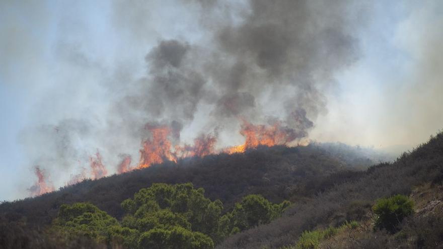 Estabilizan el incendio forestal detrás del Hospital Santa Lucía de Cartagena
