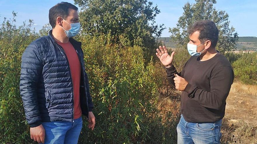Recolectores de setas apoyan la investigación del boletus edulis en Zamora