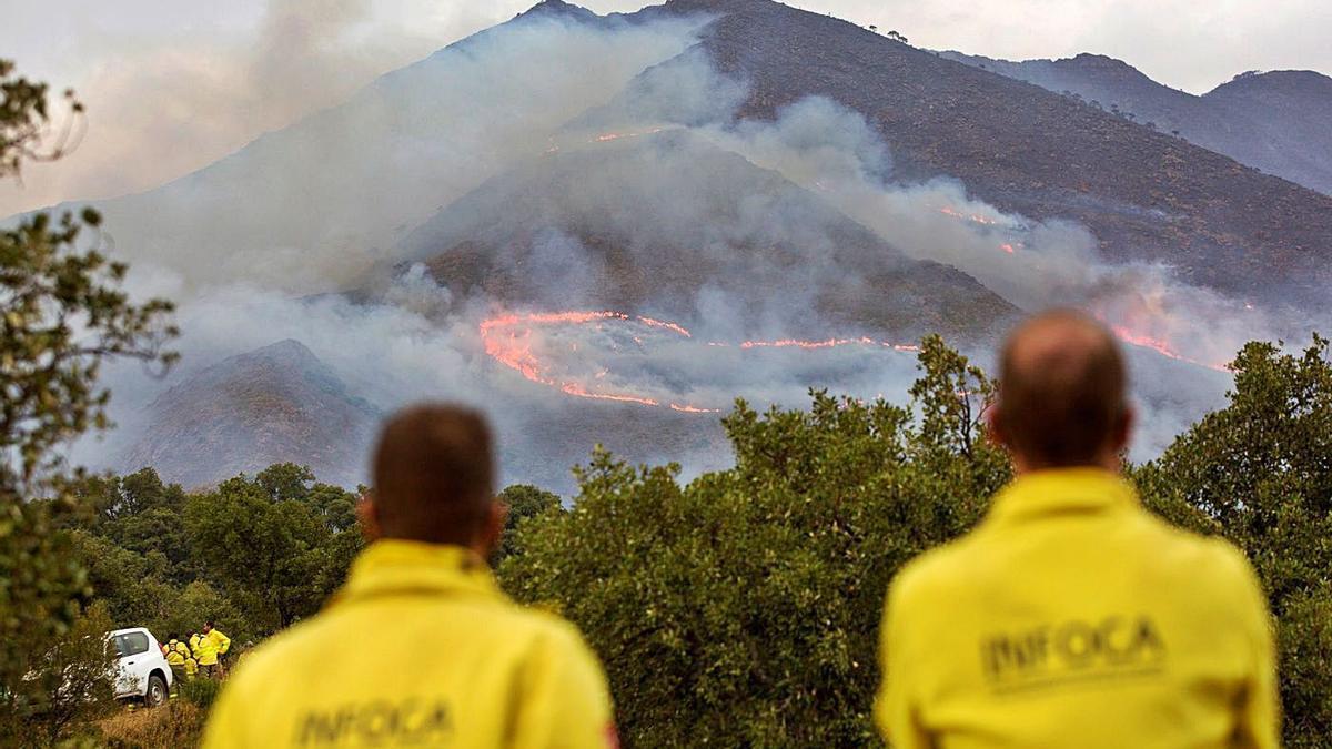 Personal del Infoca observa una zona afectada por el incendio en Sierra Bermeja.
