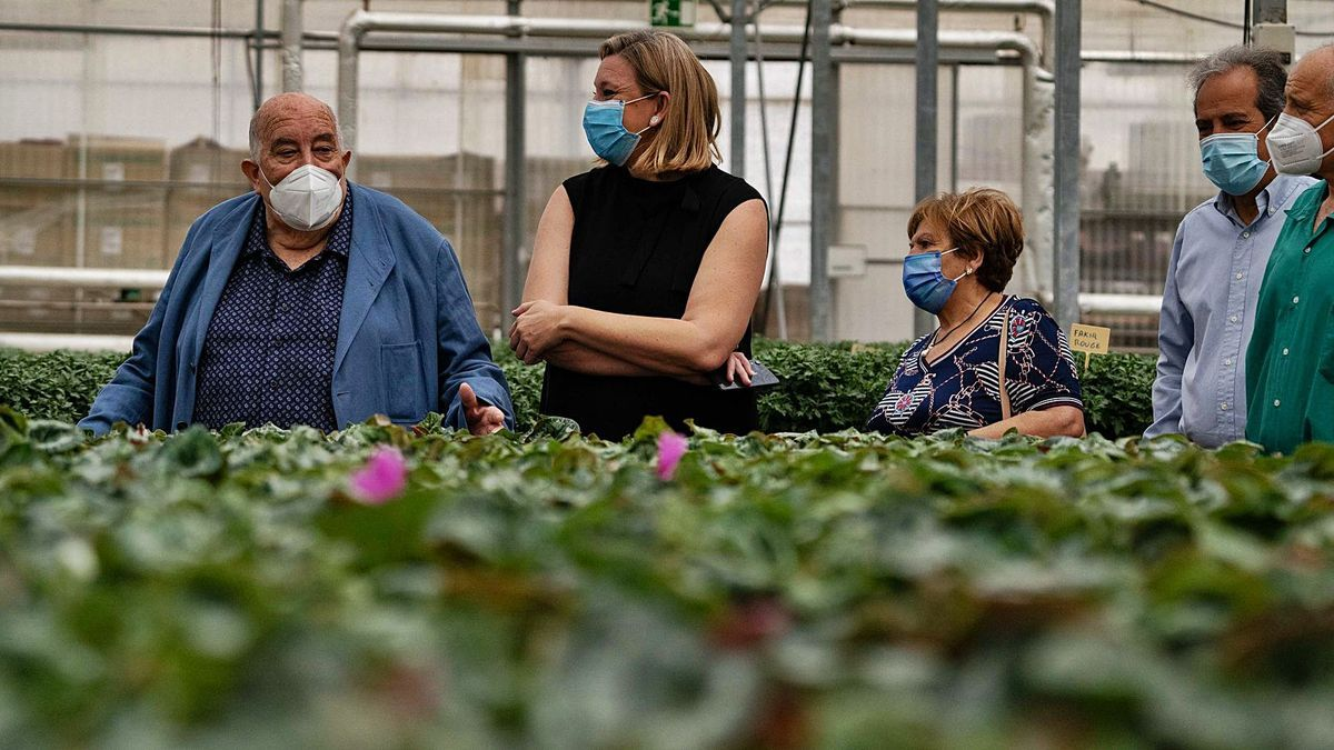 Patricio Santana, director de Asprosub, y la consejera Isabel Blanco, en uno de los viveros de la fundación en Morales del Vino.   Jose Luis Fernández