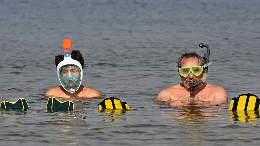 Los vecinos submarinos