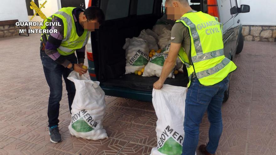 Diez detenidos por robar 10 toneladas de limones en fincas de Murcia y Cox