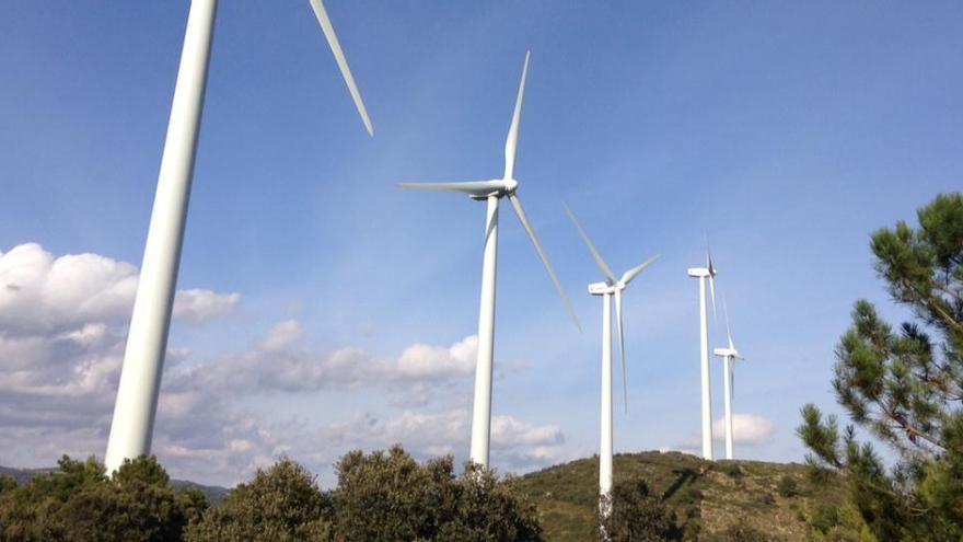 El Gobierno trasladará los costes de las renovables de la factura de la luz a las energéticas