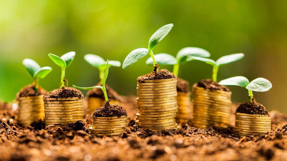 España emite por primera vez bonos verdes y logra 60.000 millones de demanda
