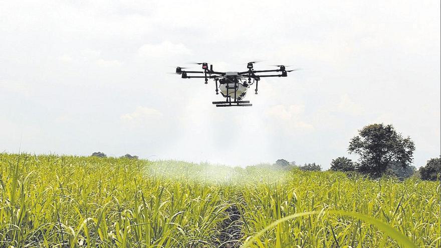 Las oportunidades y retos a los que se enfrenta el sector agroalimentario