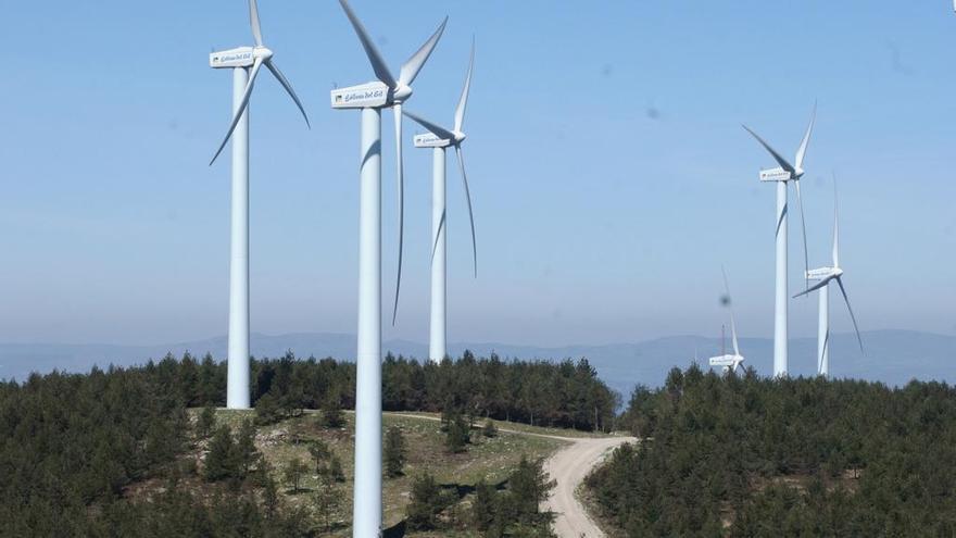 El Supremo rechaza indemnizar a parques eólicos anulados sin gastos justificados