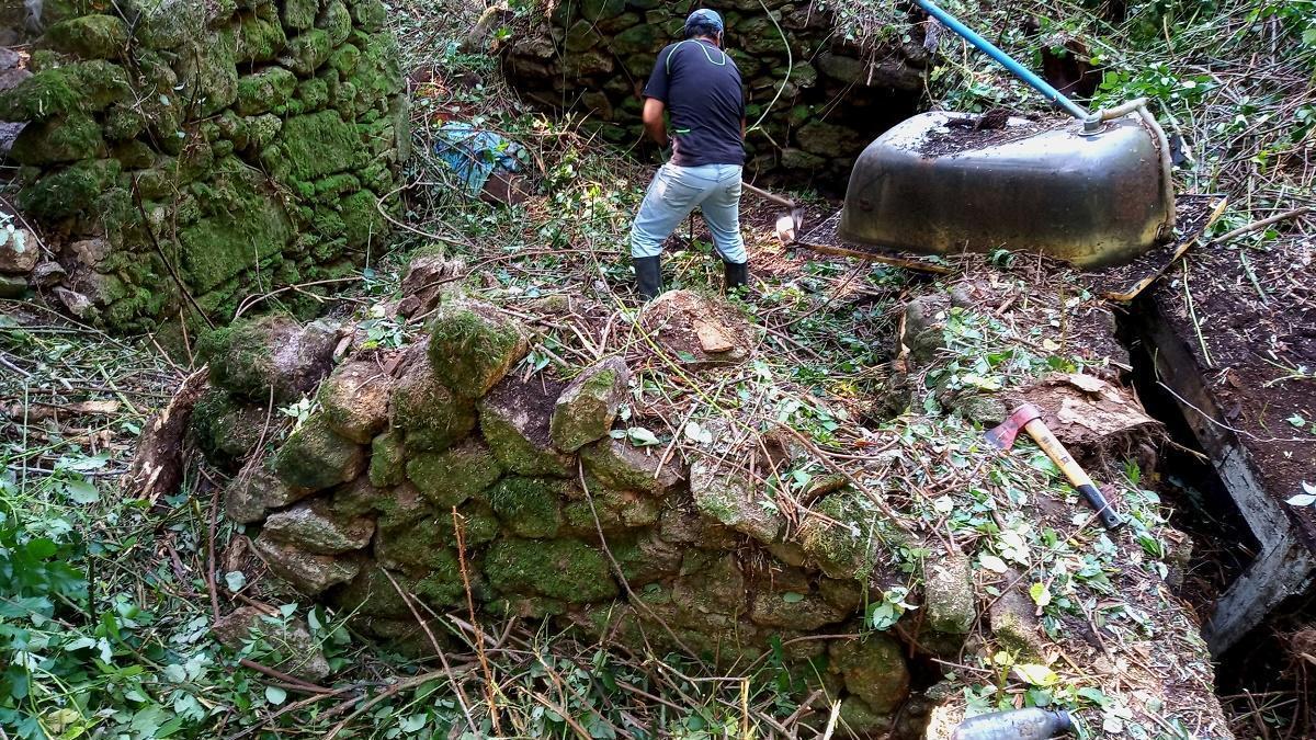 Labores de limpieza de los muros del molino que estaban ocultos por la maleza. / FdV