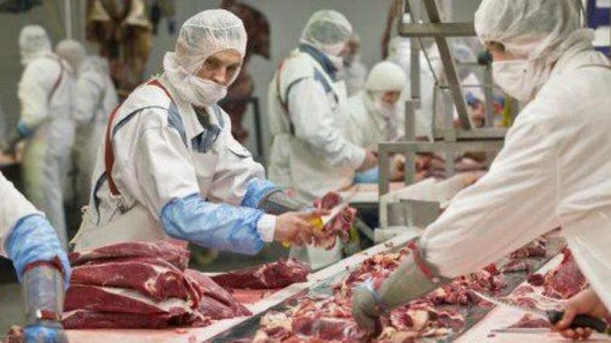 Detectan un brote de coronavirus de 6 positivos en una empresa cárnica de Valencia