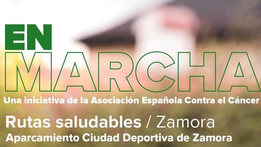 La asociación contra el cáncer de Zamora retoma las rutas saludables