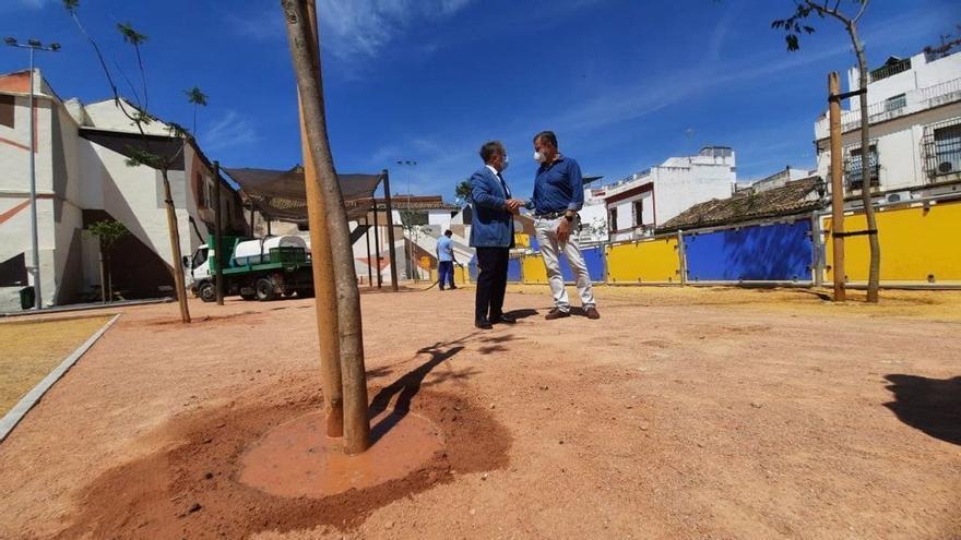 El Ayuntamiento planta nuevos árboles e implantará un nuevo sistema de riego en el antiguo Cine Andalucía