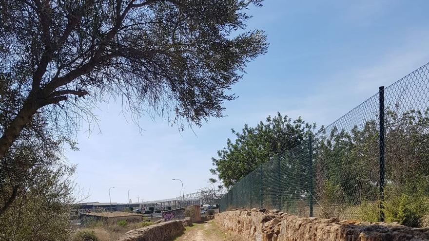 Finalizan las obras de adecuación del camino rural 'Quatre Camins' que conecta Ibiza con Santa Eulària