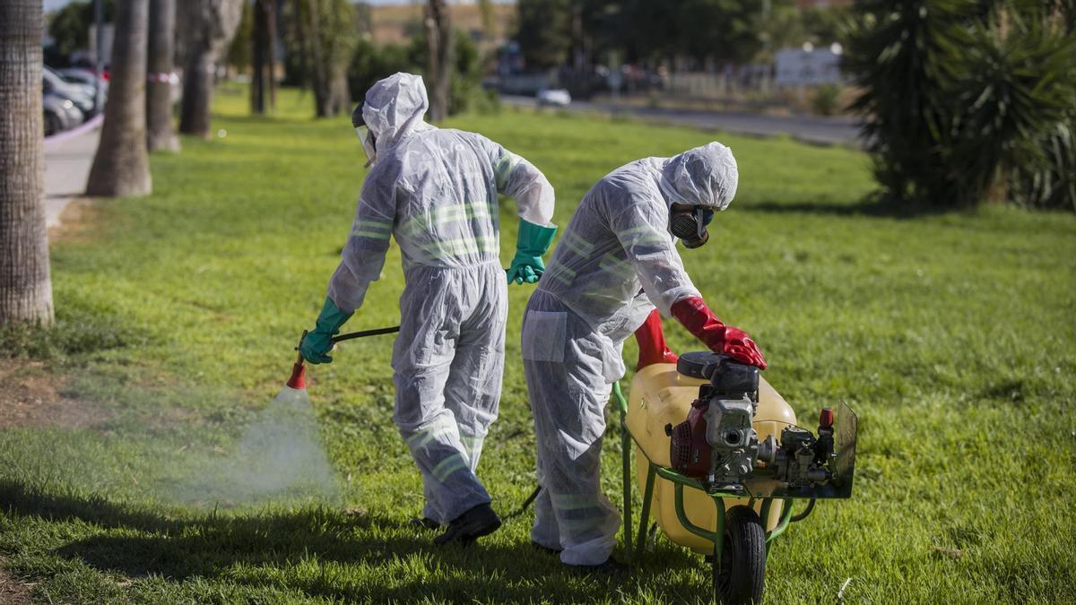 Fumigación contra los mosquitos para impedir la propagación del virus del Nilo.