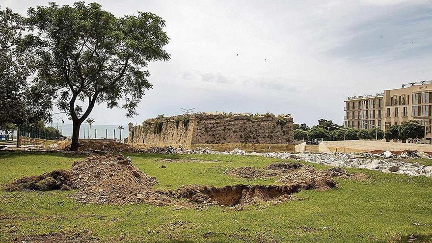 Indignación por la tala de árboles en Porta del Camp