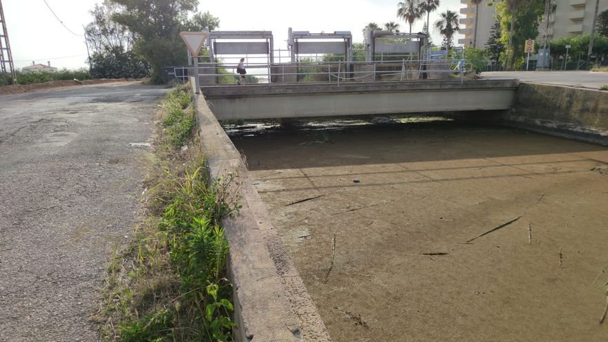 El río Vaca entre Xeraco y Tavernes se vuelve verde