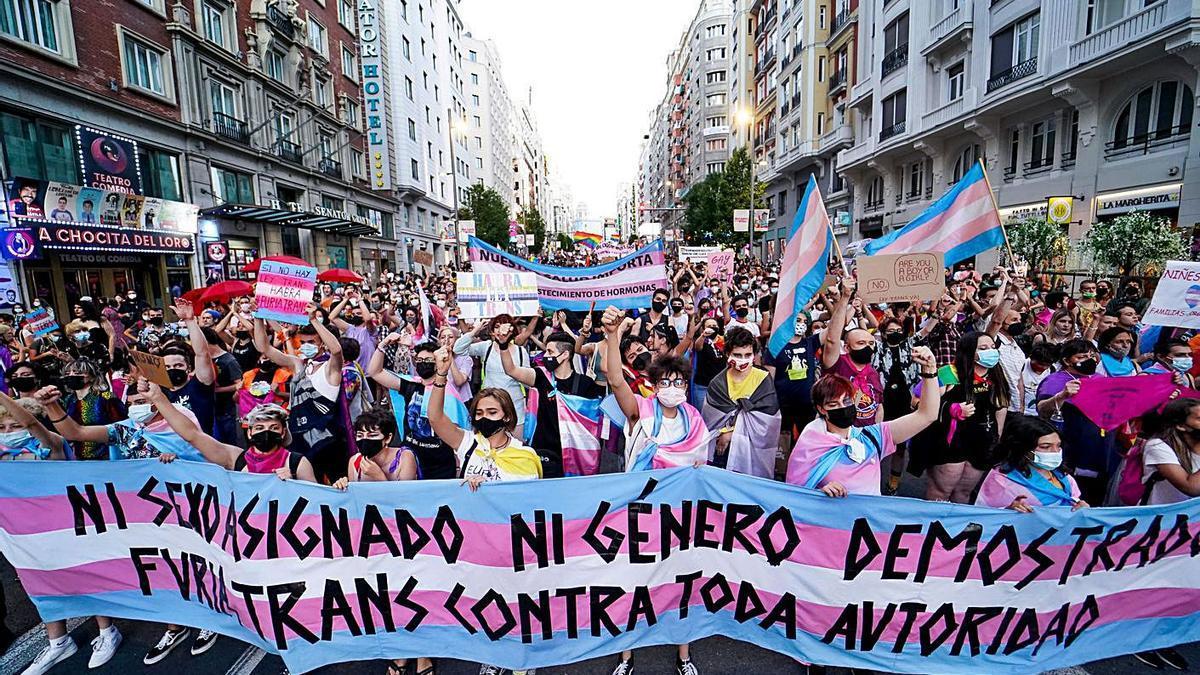 Defensores de los derechos del colectivo trans, en la manifestación del 28 de junio en Madrid.